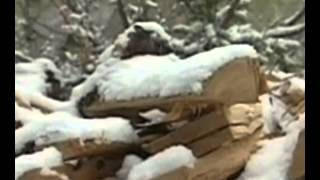Ray Mears World Of Survival Season 1 Episode 03   Siberia