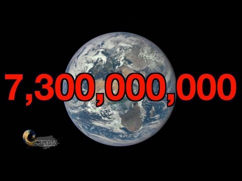 Overpopulation Will we run out of space BBC News