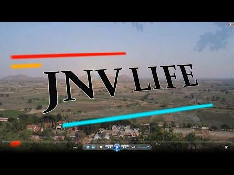 Xxx Mp4 JNV Life Be Like 3gp Sex