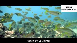 Ek Villan : Galliyan Mashup (Dj Montz Mix ) Video By Vj Chirag