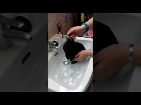 Edouard le lapin prenant son bain