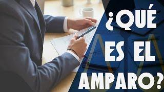 ¿Qué es el Amparo? | Su concepto, características y ejemplos.