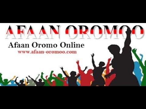 Xxx Mp4 Barnoota Afaan Oromoo Qubee Afaan Oromoo Gurguddaafi Xixiqqaa K 1ffaa 3gp Sex