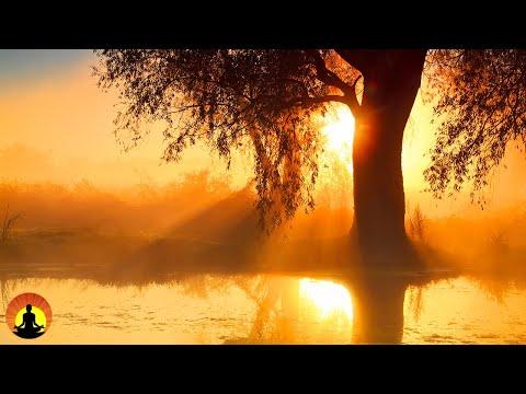 🔴 Relaxing Music 24 7 Meditation Healing Sleep Music Calm Music Zen Relax Sleep Spa Study