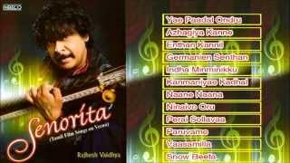 Tamil Film Instrumental | Senorita | Rajesh Vaidhya | Veena | Jukebox