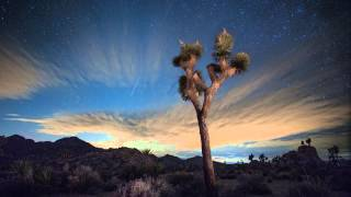 Joshua Tree Sunset to Moon Rise to Sunrise Time-Lapse 4K HD