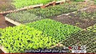 روبورتاج .. مشروع فلاحي صغير يعيل أزيد من 10 أسر اعتمادا على الزراعة البيولوجية