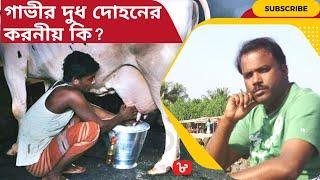 Dairy farming-5, গাভীর দুধ দোহনের সময় করনীয় ও বাছুরের পরিচর্যা, বাছুর=১ লাখ টাকা=লাভ ক্ষতি