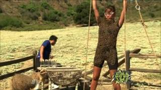 Fear Factor Season 7 Episode 6 - The Bee's Are So Angry