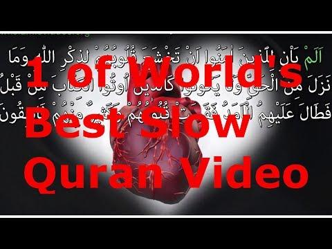 Xxx Mp4 1 Of World S Best Slow Quran Recitation AMAZING VIEWS Surah IRON 1 1 WORDS 3gp Sex