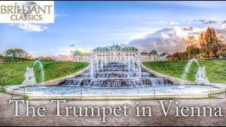 The Trumpet in Vienna