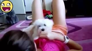 Cewek Seksi Ini Nyusuin Anjing