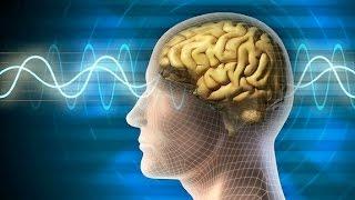 حقائق مذهلة عن دماغ الإنسان