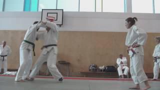 20 Kuzushi Breaking Balance Teaching