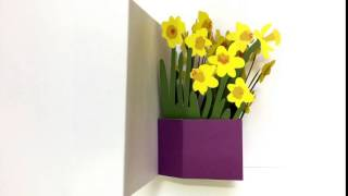 Flower Popup Card 2