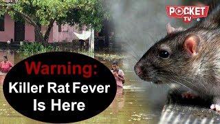 Modi still top priority of India | Rat fever kills 12 | News Top 10 - 4 Sept 2018
