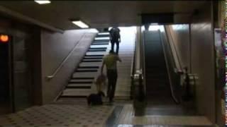 Innovative Stairs.mov