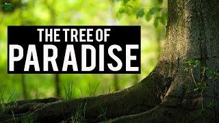 The Tree Of Paradise - True Story