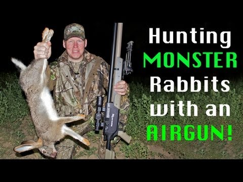 Extreme Airgun Hunting Giant rabbits with the Benjamin Rogue .357
