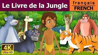 Le Livre de la Jungle - Histoire pour Enfants - Contes de Fée  - 4K UHD - French Fairy Tales