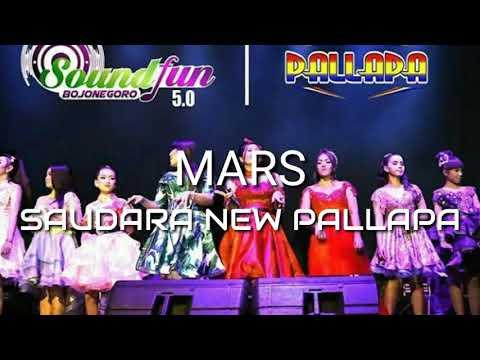 Saudara New Pallapa (SNP) Indonesia