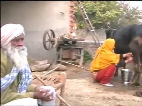 Punjabi Farmer Lifestyle-1