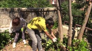 Puli-AMO Messina- I giardini di Montalto- 8° atto