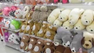 韓国ダイソーって魅力的な商品いっぱい 'ω'♡