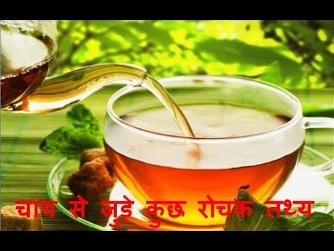 Xxx Mp4 चाय से जुड़े कुछ रोचक तथ्य Tea Interesting Facts In Hindi 3gp Sex