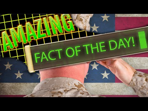 The Reality Of Military Rape Will Amaze & Surprise You