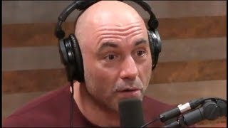 Joe Rogan Rants About Private Hunting Spots on Public Land