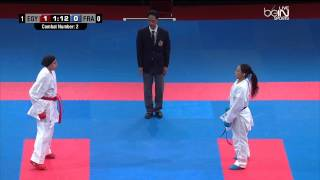 Finale Championnat du Monde karate 2014 ( Egipte Vs France) 1