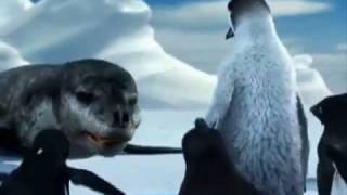 Funny Punjabi Clip Penguins talking in Punjabi dubbed.flv
