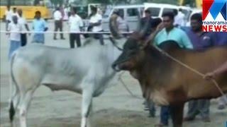 Two die, nearly 30 injured in Tamil Nadu