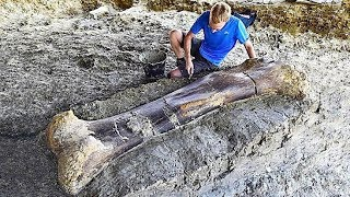 12 Most Amazing Recent Discoveries
