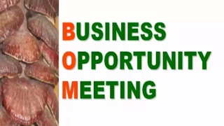 DXN BUSINESS OPPORTUNITY PRESENTATION (HINDI/URDU)