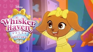 Pets on the Hunt! | Whisker Haven Tales with the Palace Pets | Disney Junior