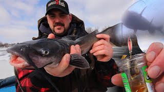 Ice Fishing for Channel Catfish