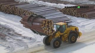 Краслесинвест лесопромышленный комплекс