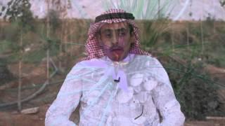 زراعة الزعفران في المملكة العربية السعودية  2016