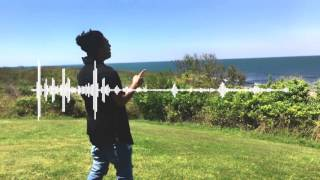Shib-Z - Drunk Tonight (Audio) | Kamikaze | Summer Vibe | 2017