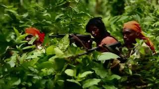 বাংলাদেশ আর্মি ট্রেনিং || দেখুন বাংলাদেশ আর্মিদের কি ভয়াবহ ট্রেনিং করতে হয় ।Bangladesh Army Training