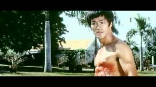 Bruce Lee batalla final (Karate a muerte en Bangkok / The Big Boss)