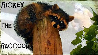 Ricky the Raccoon & One-Eyed Mikey!