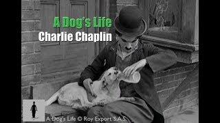 Charlie Chaplin - A Dog