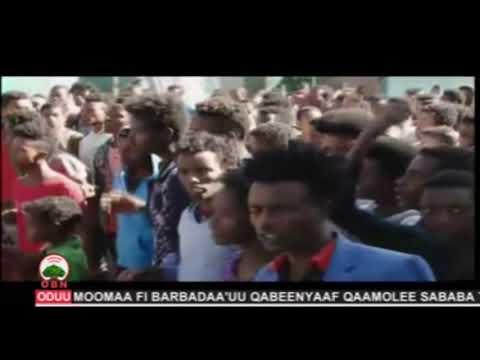Xxx Mp4 Hiriira Magaalota Oromiyaa Sad 25 2011 3gp Sex