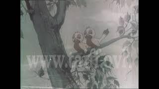 اعلانات سورية قديمة جدا  - شهادات الاستثمار 4 - يا توتو ليش زعلان