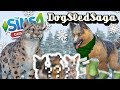 Download Video Download Snow Leopard and German Shepard Puppies?! 🐶🎄 3GP MP4 FLV