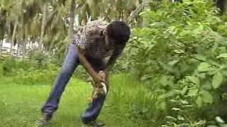 আস্তো মুরগি খাও তুমি গিলে গান 2006