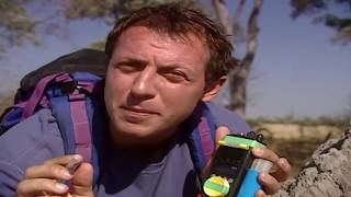 ▶ Zoboomafoo Season 2 Episodes 211 - World of Legs - Zoboomafoo 2018 Full Episodes